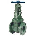 OS&Y Ductile Iron Gate Valve: Flanges,150 psi,class 150