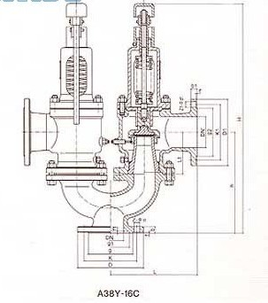 Structure of Twin Spring Safety Valve