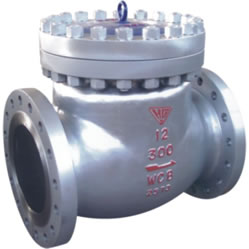 Cryogenic Swing Check Valve