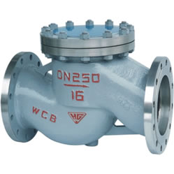 Steel Lift Check Valve